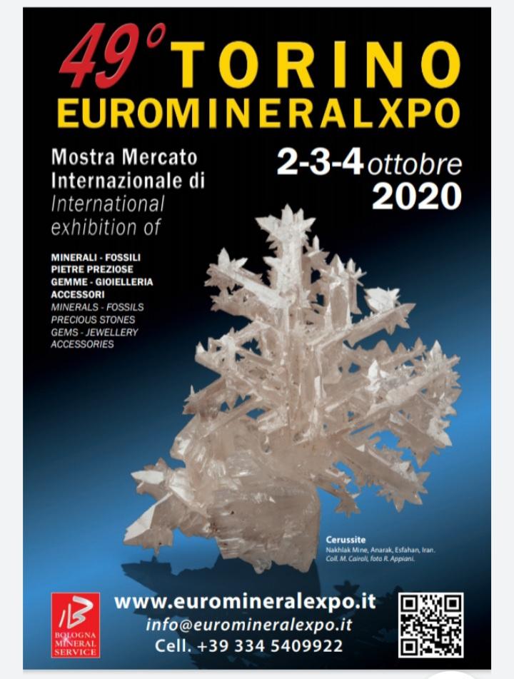 Euromineralexpo, Torino 2020